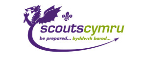 New Scouts logo 2015 RGB-Colour version