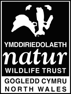 North Wales Wildlife Trust LOGO(1)