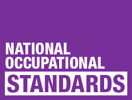 YOUTH WORK NATIONAL OCCUPATIONAL STANDARDS (NOS)